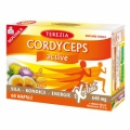 TEREZIA CORDYCEPS active cps.60